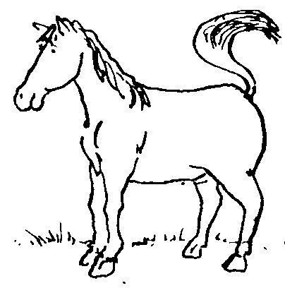 Kad narastem bit ću konj NJIIIIIIIHA!